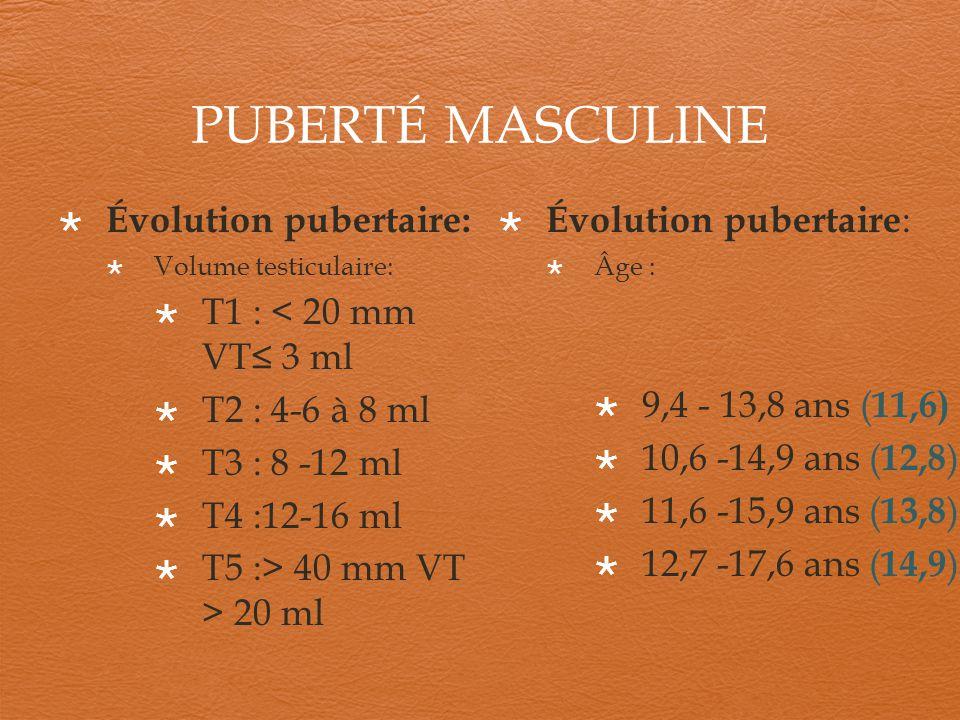 PUBERTÉ MASCULINE Évolution pubertaire: Volume testiculaire: T1 : < 20 mm VT 3 ml T2 : 4-6 à 8 ml T3 : 8 -12 ml T4 :12-16 ml T5 :> 40 mm VT > 20 ml Év