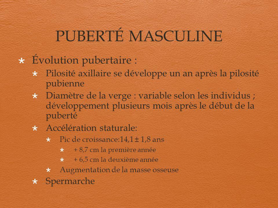 PUBERTÉ MASCULINE Évolution pubertaire : Pilosité axillaire se développe un an après la pilosité pubienne Diamètre de la verge : variable selon les in