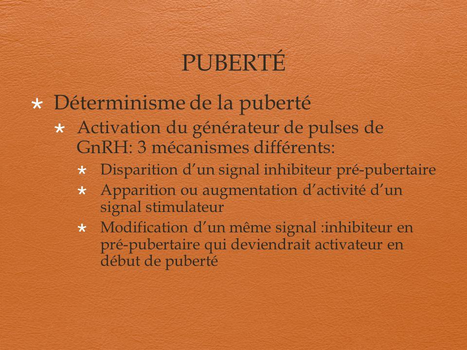 PUBERTÉ Déterminisme de la puberté : Générateur de pulses de GnRH actif vers 6-7 ans, une heure après lendormissement Augmentation des pics nocturnes de LH démarrage de la puberté Puberté en cours : augmentation de la fréquence et de lamplitude des pic de LH et FSH
