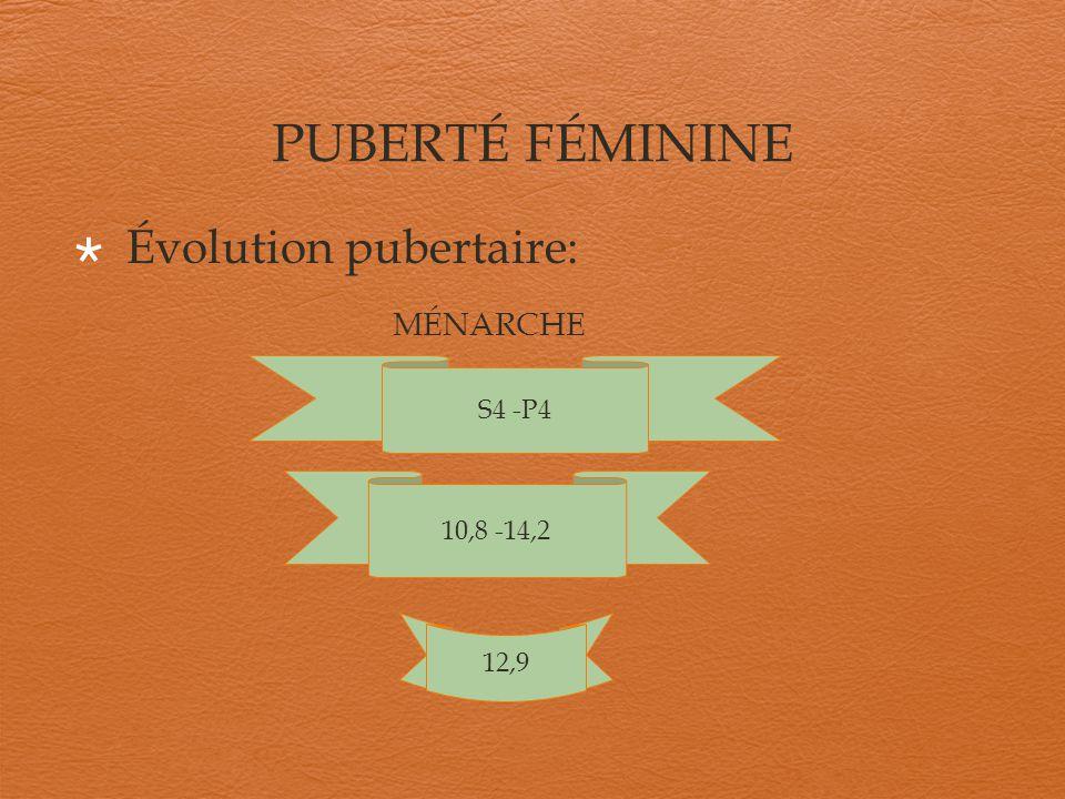 Évolution pubertaire: MÉNARCHE S4 -P4 10,8 -14,2 12,9