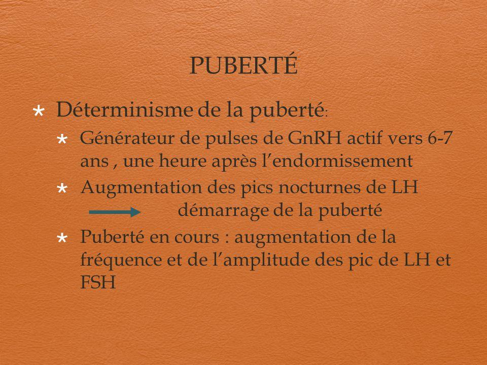PUBERTÉ Déterminisme de la puberté : Générateur de pulses de GnRH actif vers 6-7 ans, une heure après lendormissement Augmentation des pics nocturnes