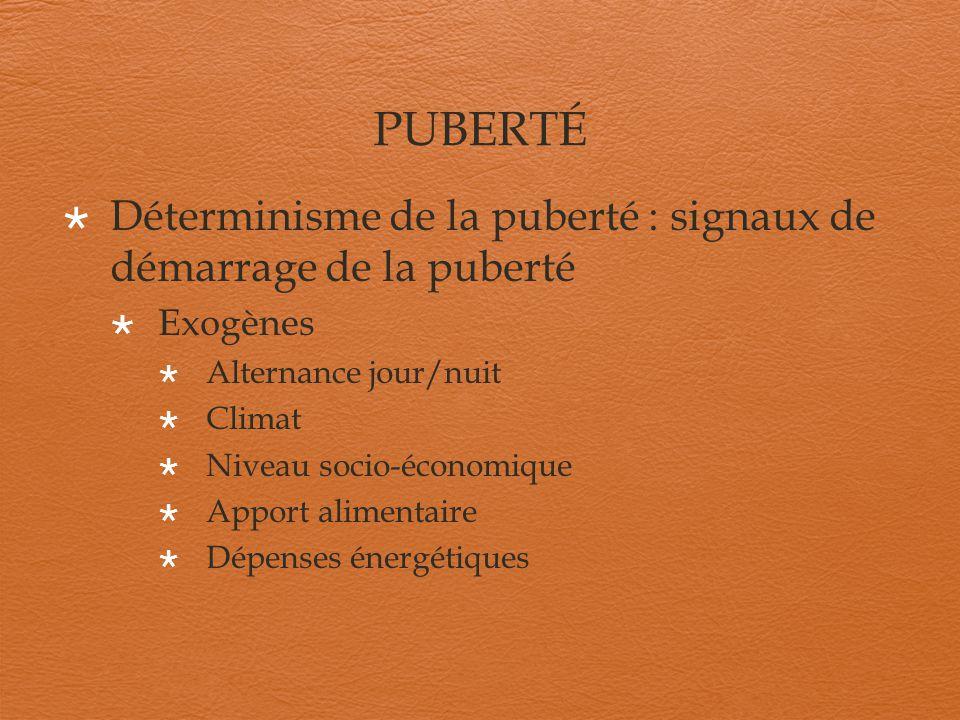 PUBERTÉ Déterminisme de la puberté : signaux de démarrage de la puberté Exogènes Alternance jour/nuit Climat Niveau socio-économique Apport alimentair