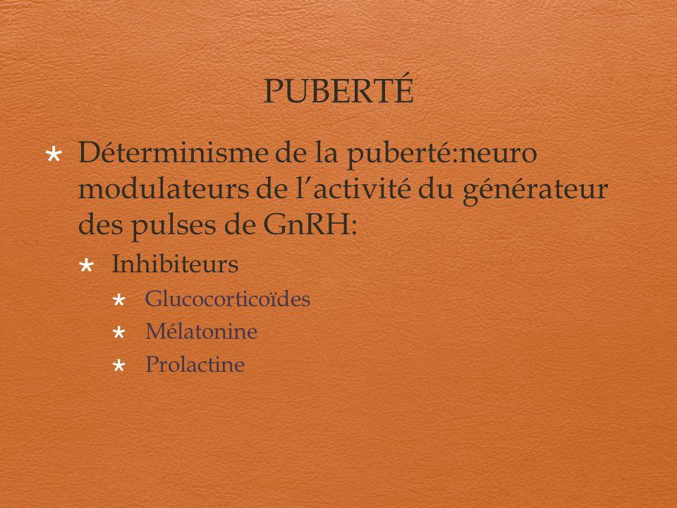 PUBERTÉ Déterminisme de la puberté : neuro modulateurs de lactivité du générateur des pulses de GnRH Activateurs Insuline Histamine Kisspeptines et récepteur GPR54 Leptine