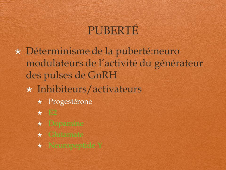 PUBERTÉ Déterminisme de la puberté:neuro modulateurs de lactivité du générateur des pulses de GnRH Inhibiteurs/activateurs Progestérone E2 Dopamine Gl