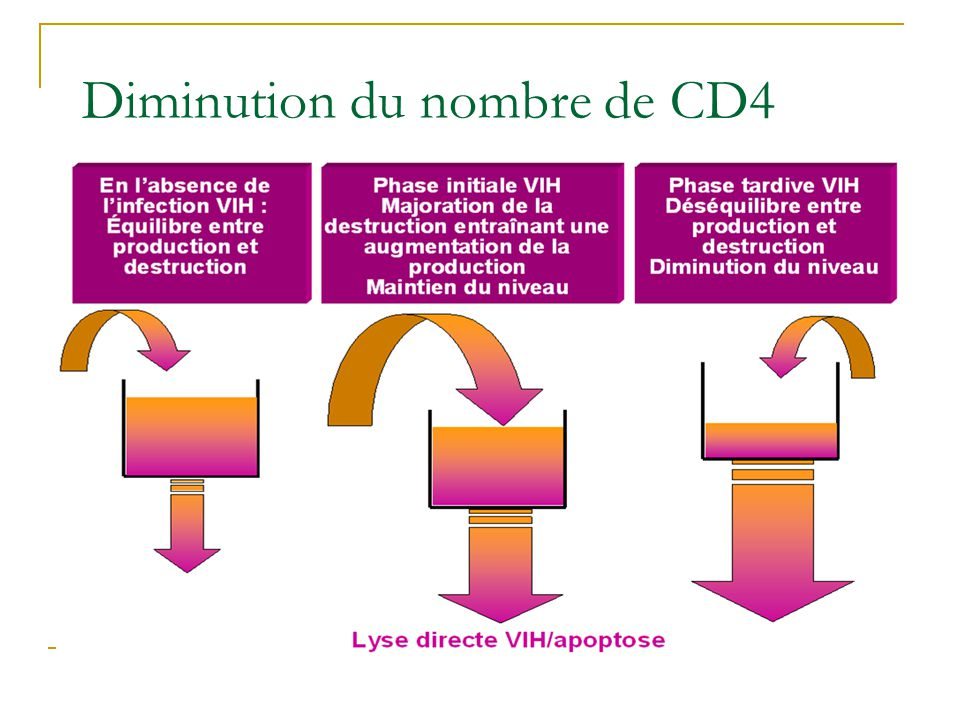 Diminution du nombre de CD4