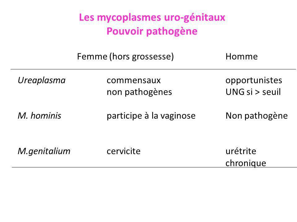 Les mycoplasmes uro-génitaux Rechercher : lequel.Quand.