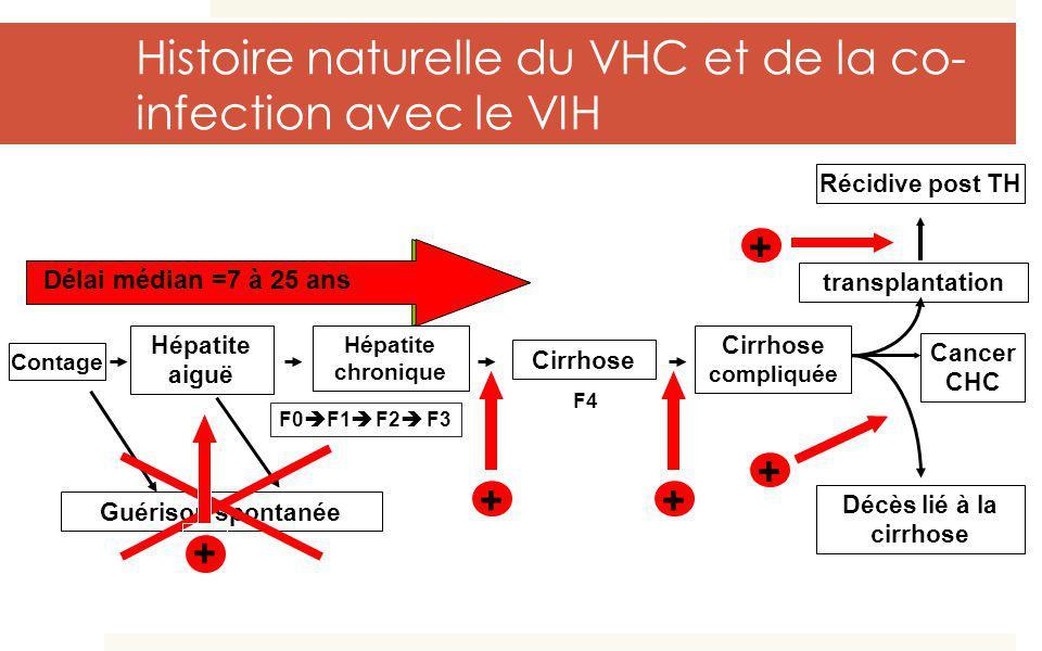 Contage Hépatite aiguë Hépatite chronique Cirrhose compliquée transplantation Guérison spontanée F0 F1 F2 F3 F4 Décès lié à la cirrhose Récidive post