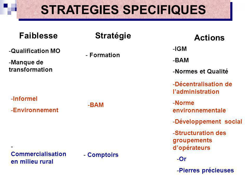 FaiblesseStratégie Actions -Qualification MO -Manque de transformation - Formation -IGM -BAM -Normes et Qualité -Informel -Environnement -BAM -Décentr