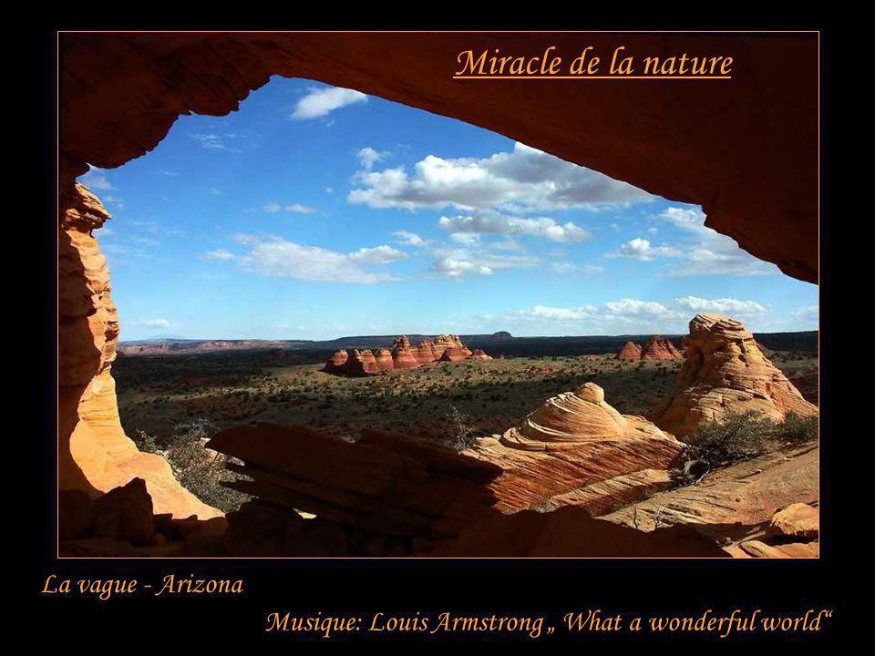 Miracle de la nature La vague - Arizona Musique: Louis Armstrong What a wonderful world