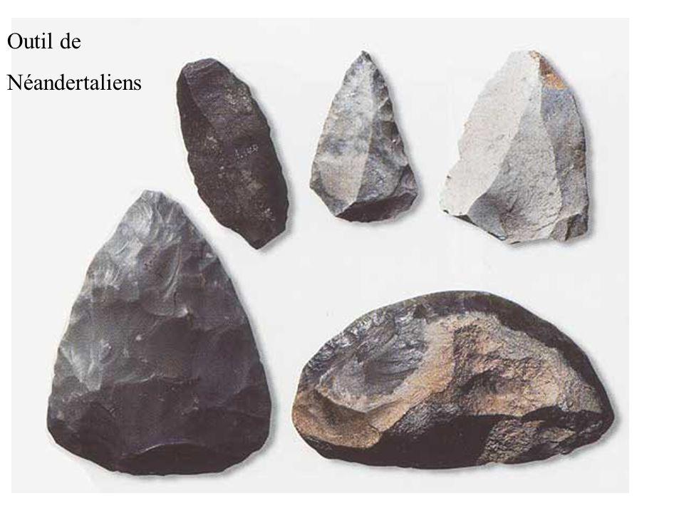 Outil de Néandertaliens