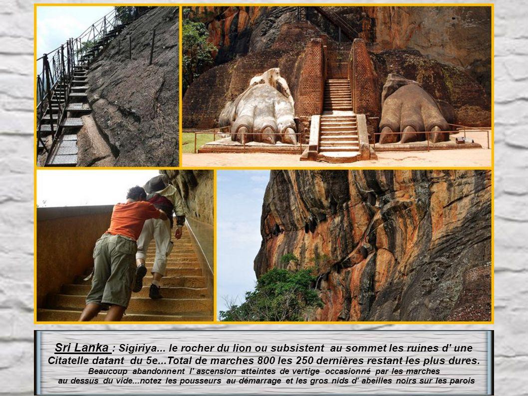 S ri Lanka : à Minhintale.1840 marches pour atteindre le grand Bouddha, à droite le Rocher de la méditation