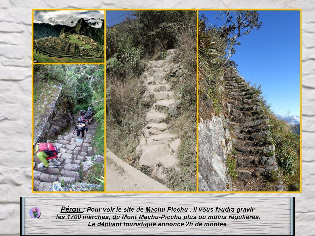 Allemagne : Les escaliers Elbsandsteingebirge à Dresde 487 marches datant du XIIIe