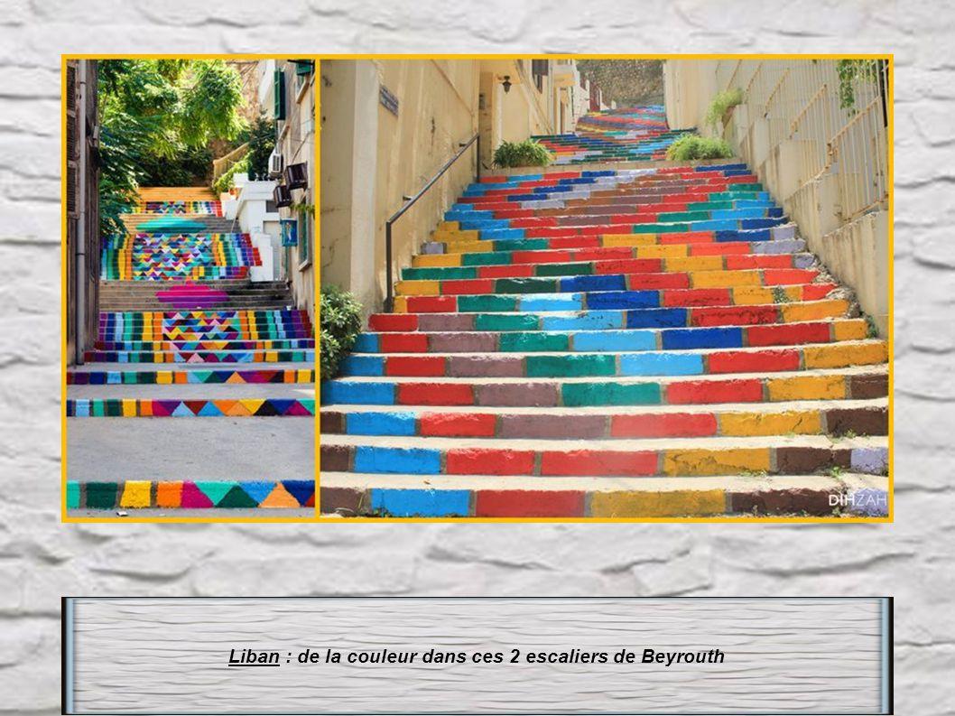Brésil : Escalier Selaron Rio de Janeiro 125m de long-215 marches 2000 carreaux de faïence venant de 120 pays. l' artiste créateur Jorge Selaron aurai