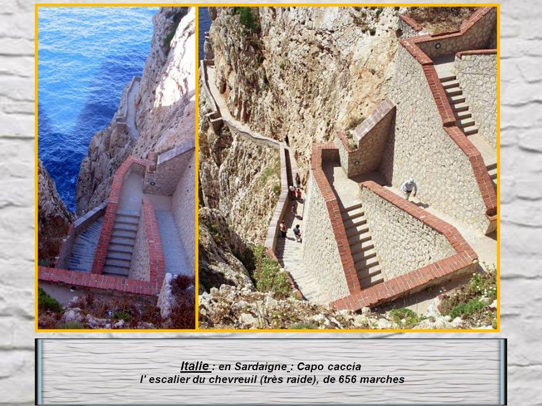 Italie : en Sardaigne : Capo caccia l escalier du chevreuil (très raide), de 656 marches
