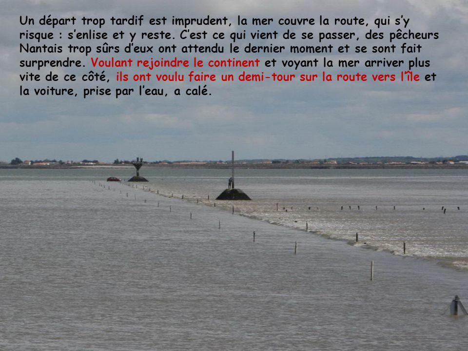 Le Gois à larrivée de la marée montante : On dit que la mer arrive à la vitesse dun cheval au galop, voyez le courant… Le sable est gris et vaseux. Le