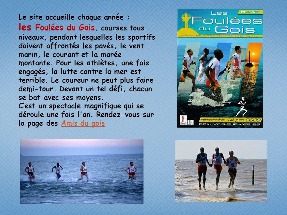 Les panneaux de prévention C'est une curiosité de la nature, ce passage du Gois, qui relie l'île de Noirmoutier au continent est Long de 4150 mètres.