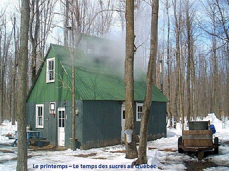 La célèbre petite maison blanche qui a résisté au déluge du Saguenay