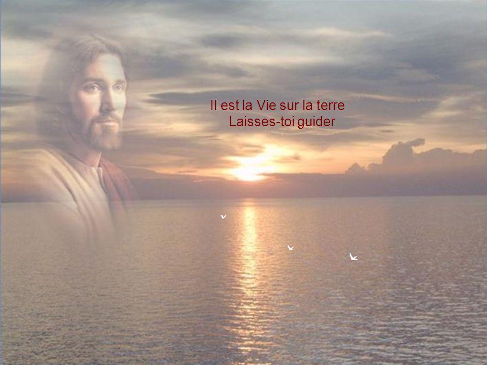 Il est la Vie sur la terre Laisses-toi guider
