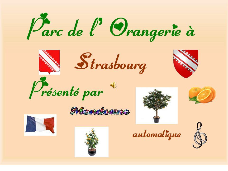 Parc de l Orangerie à Strasbourg Présenté par automatique
