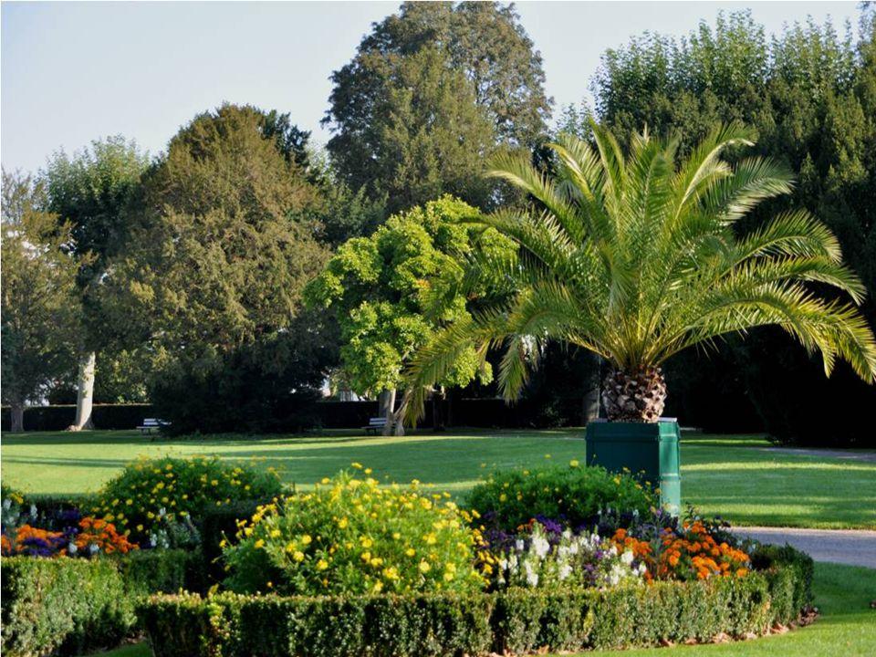 Le parc de l Orangerie est le plus grand de Srasbourg, environ 26 hectares C est un endroit idéal pour la promenade La création du parc remonte au 18 ° siècle C est Le Nôtre créateur des jardins deVersailles qui a dessiné Les allées principales du parc