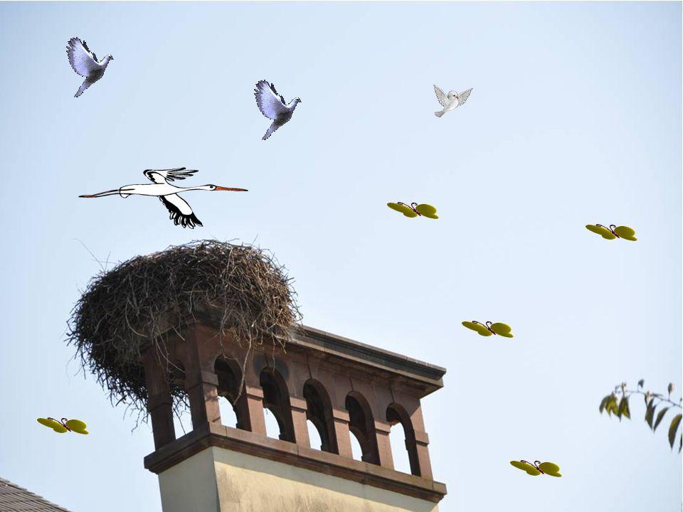 Montage,réalisation et photos personnelles: Mondoune Musique : Wat Awonderful Worl Fait le 15/10/2011 mondoune@yahoo.fr