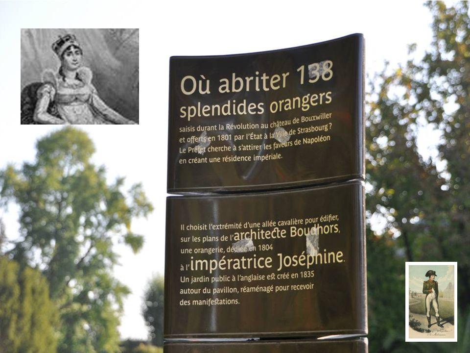 Détruit par un incendie en 1968 le pavillon Joséphine sera reconstruit à l identique Mais pour une vocation culturelle Aujourd hui il ne reste que 3 orangers dans les serres du parc Mais qui ne sont plus accessibles au public