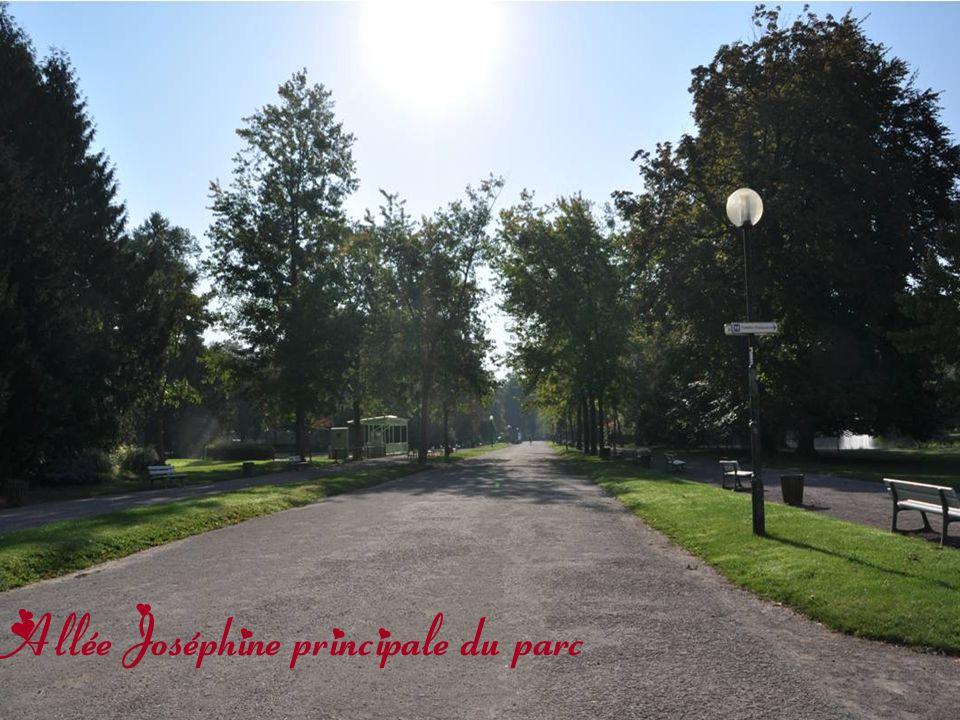 Allée Joséphine principale du parc