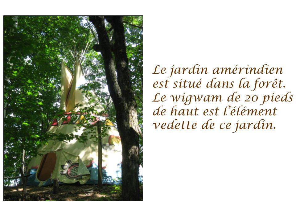Un festin en forêt est aménagé au mi- lieu des vestiges dun site historique dun moulin à scie des années 1800.