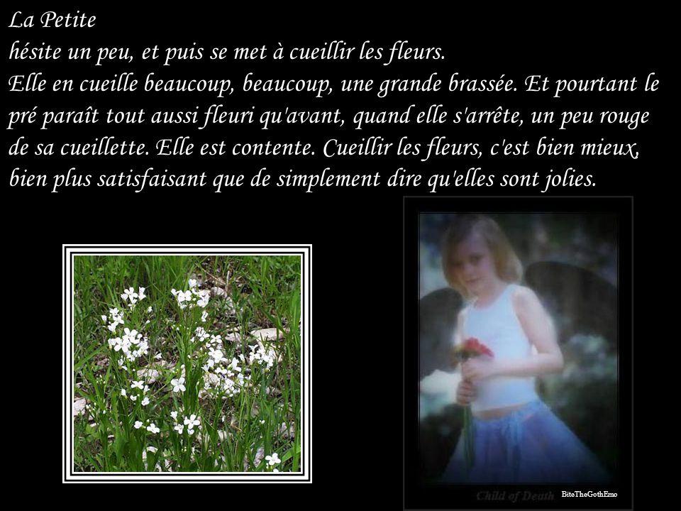 Musique: Andantino du Quintette en la majeur « La Truite » de Schubert Photos : Internet Daniel Janvier 2008 danielvillaperla@gmail.com Ce diaporama numéro 36 est strictement privé.