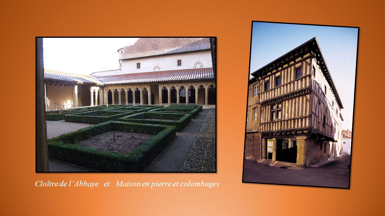 Abbaye bénédictine Saint Fortuné et décor du grand portail.
