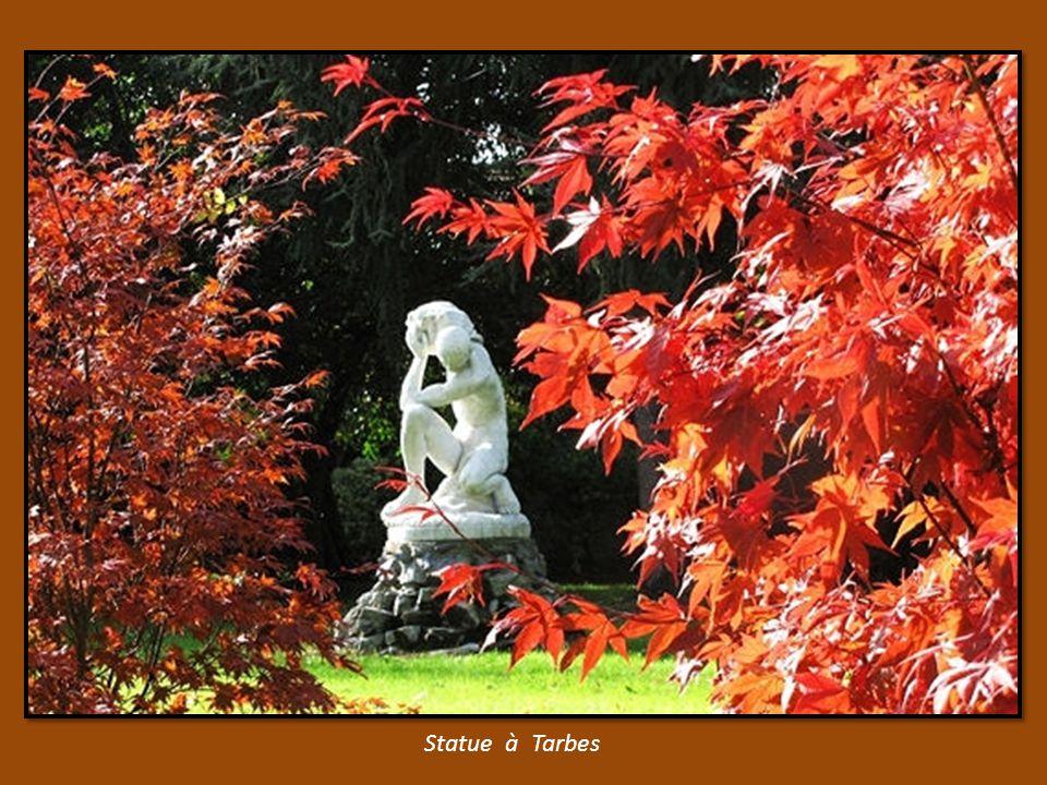 Parc de l Orangerie à Strasbourg