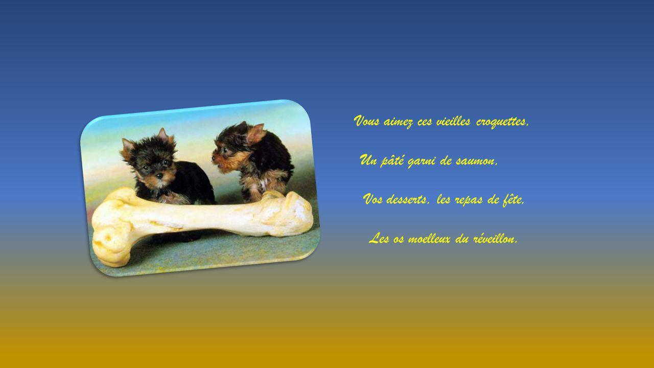Cœur de Chien Un texte de Simone Robert, proposé par Jackdidier