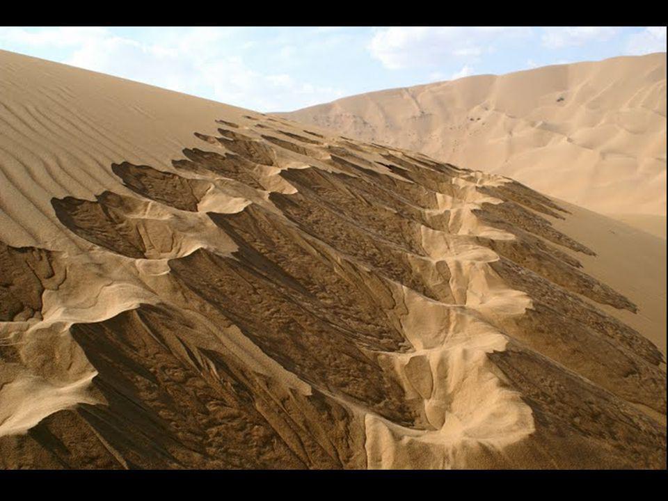 Le désert Badain Jaran se trouve au nord de la Chine, en Mongolie Intérieure. Le désert possède une caractéristique unique: il recèle les dunes fixes