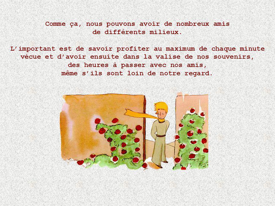 Saint-Exupéry dit: Cest le temps que tu as perdu pour ta rose qui fait que ta rose est si importante à tes yeux. Alors moi je dis : cest le temps que