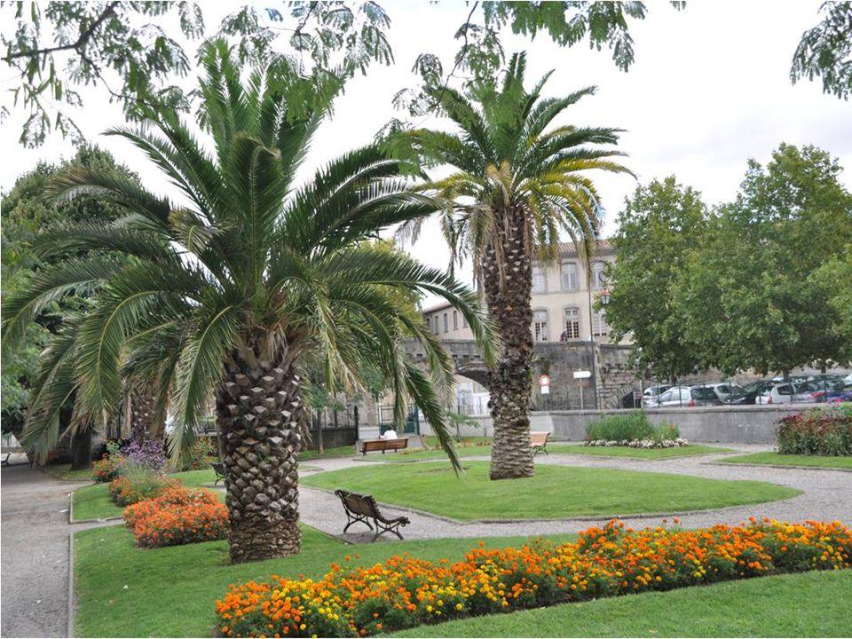 Visite du jardin de sire À Carcassonne dans laude Présenté par automatique