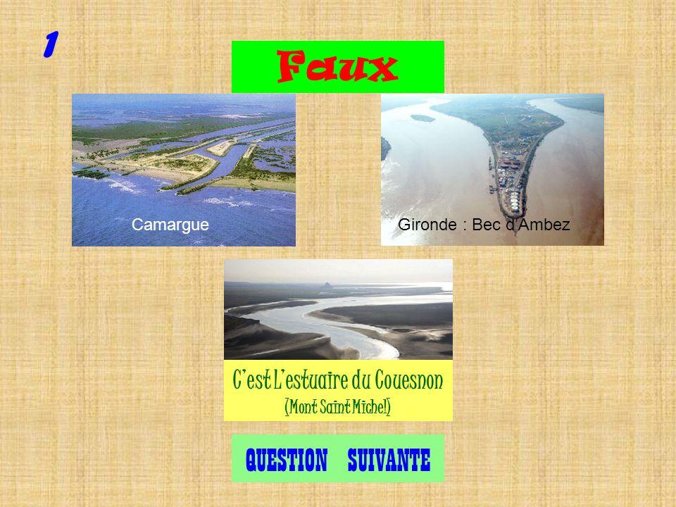 Cest bien lestuaire du Couesnon, petit fleuve côtier qui se jette dans la baie du Mont Saint Michel.