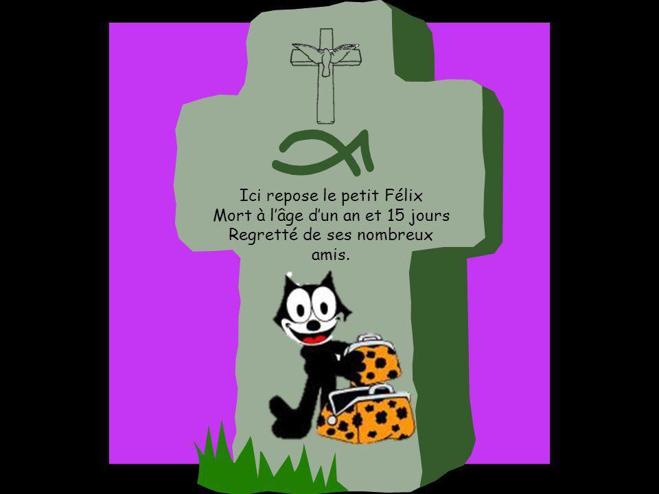Ici repose le petit Félix Mort à lâge dun an et 15 jours Regretté de ses nombreux amis.