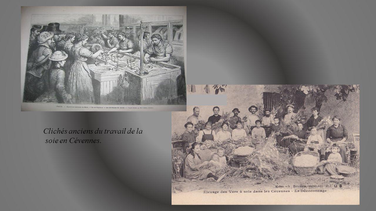 Clichés anciens du travail de la soie en Cévennes.