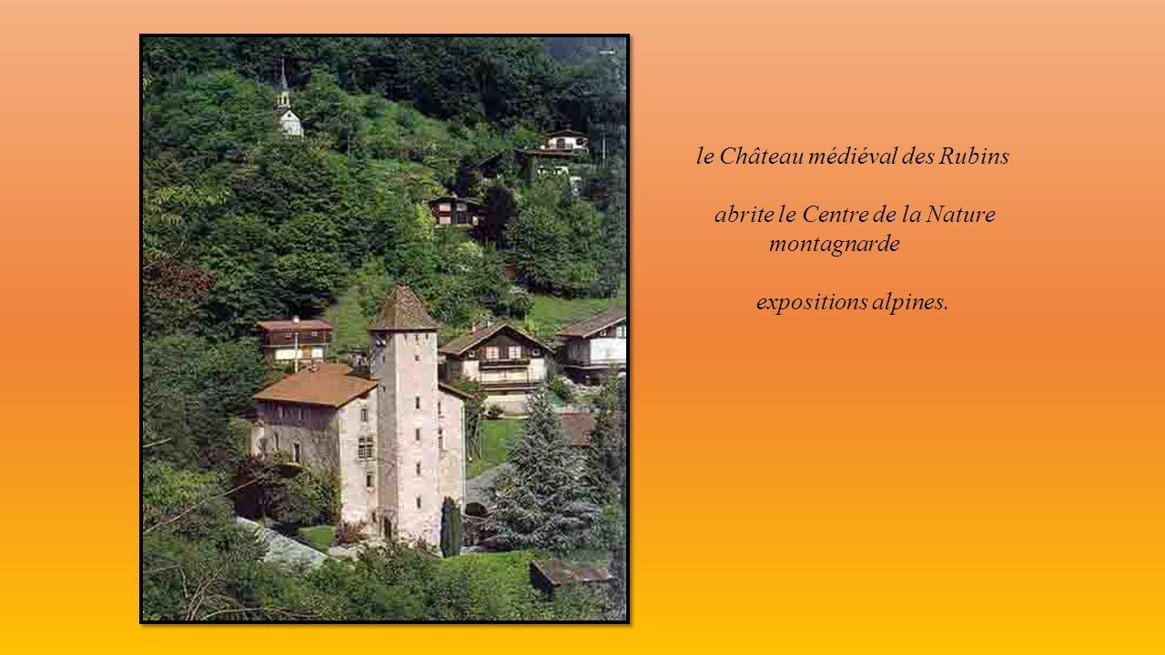 le centre ville (Place Charles Albert) avec le Mont Blanc