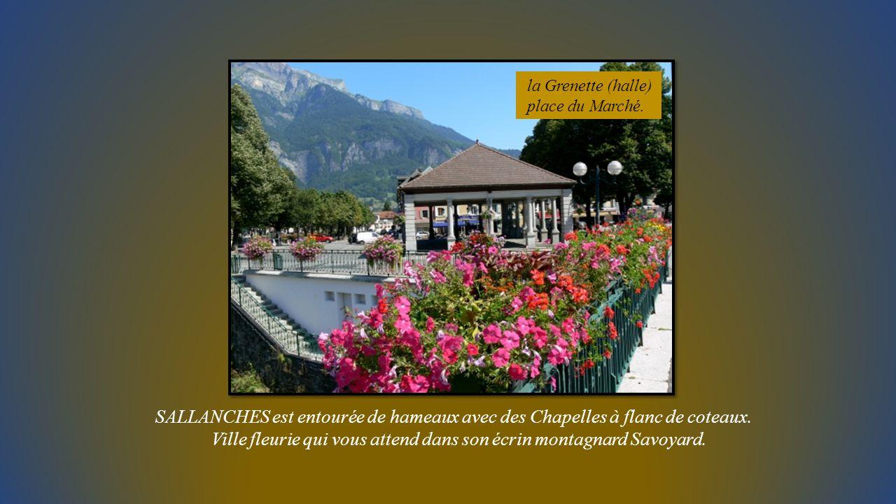 le Château médiéval des Rubins abrite le Centre de la Nature montagnarde expositions alpines.