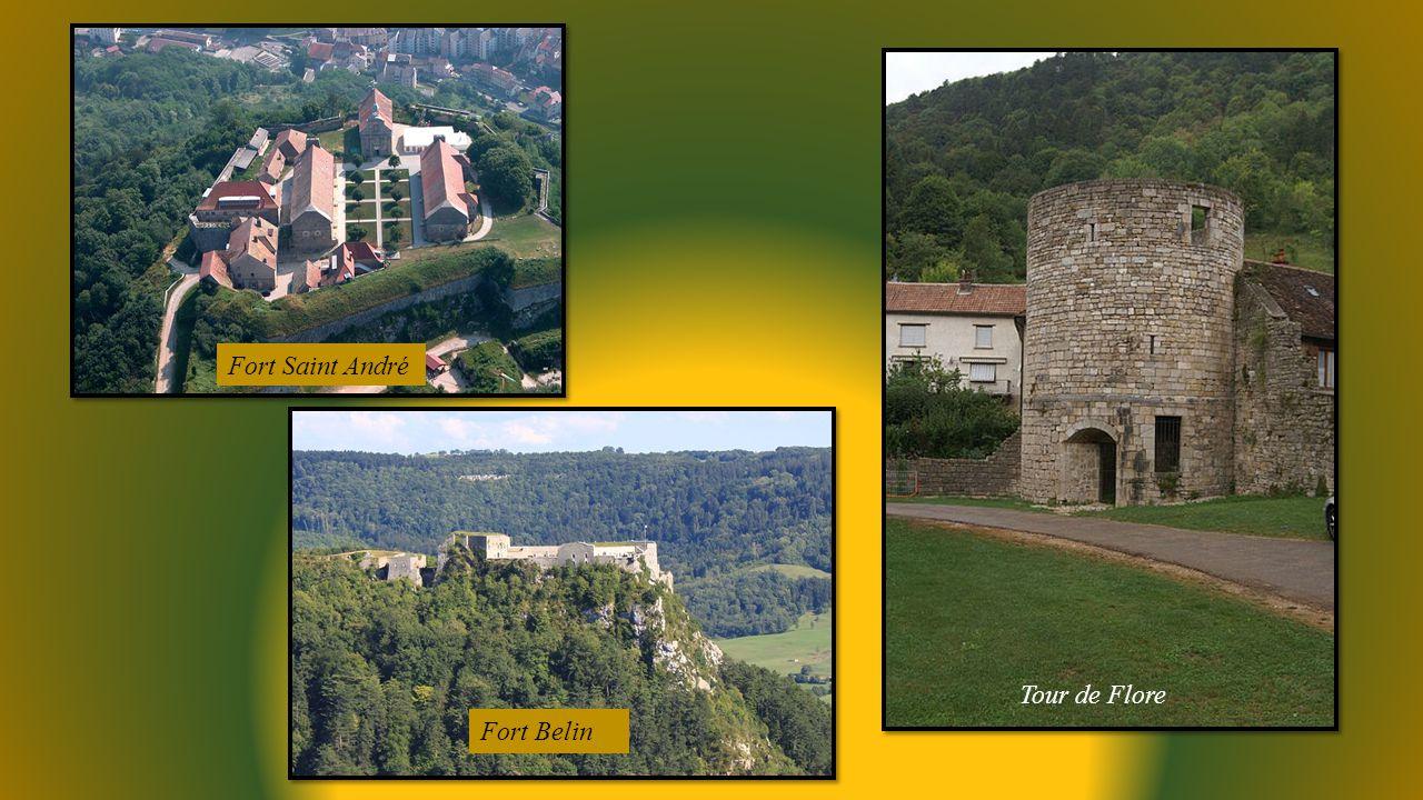 Fort Saint André Fort Belin Tour de Flore