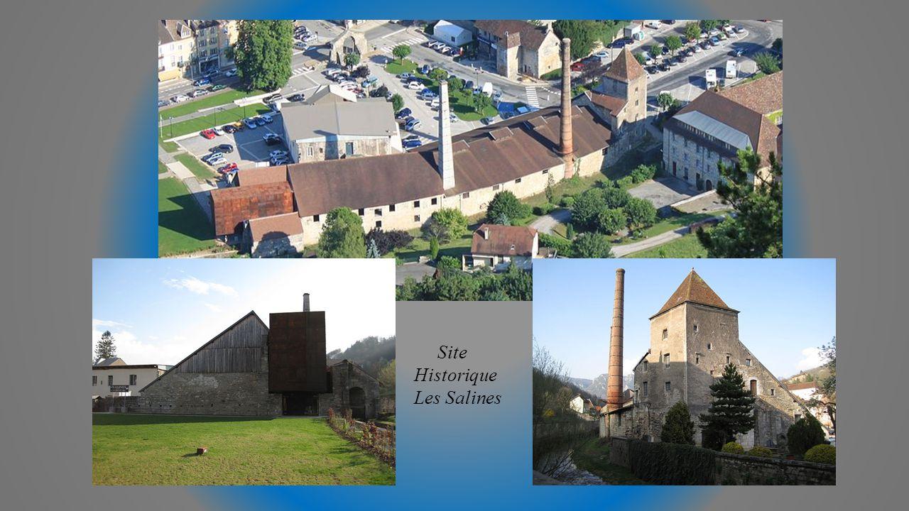 La Tour des Comtes de Genève et le Château