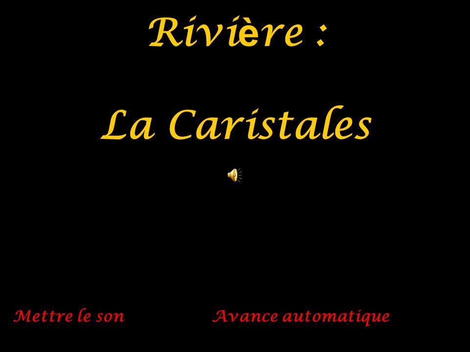 Rivi è re : La Caristales Mettre le son Avance automatique