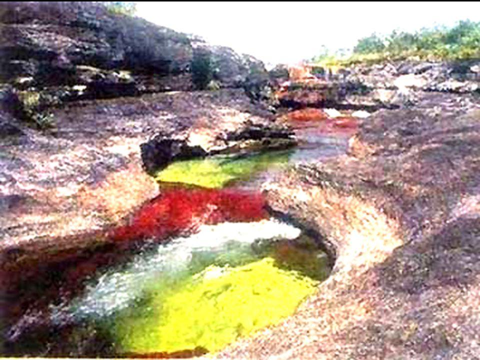 Cette rivi è re est situ é e pr è s de la ville de La Macarena en Colombie, Am é rique du Sud.