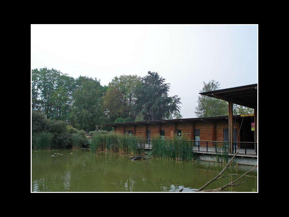 Le Parc des Oiseaux à Villars Les Dombes dans lAin entre Bourg en Bresse et Lyon Ouverture en Sept.