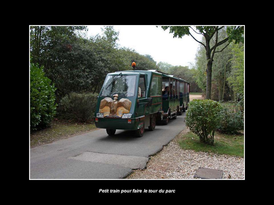 Petit train pour faire le tour du parc