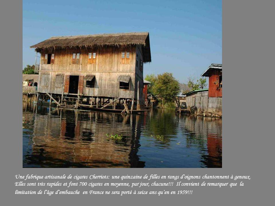 Au retour vers le lac Inlé, une petite maison sur pilotis…..