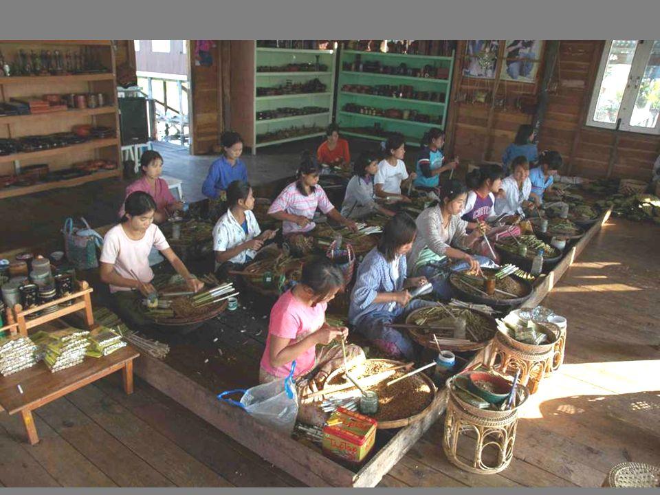 Une fabrique artisanale de cigares Cherriots: une quinzaine de filles en rangs doignons chantonnent à genoux.