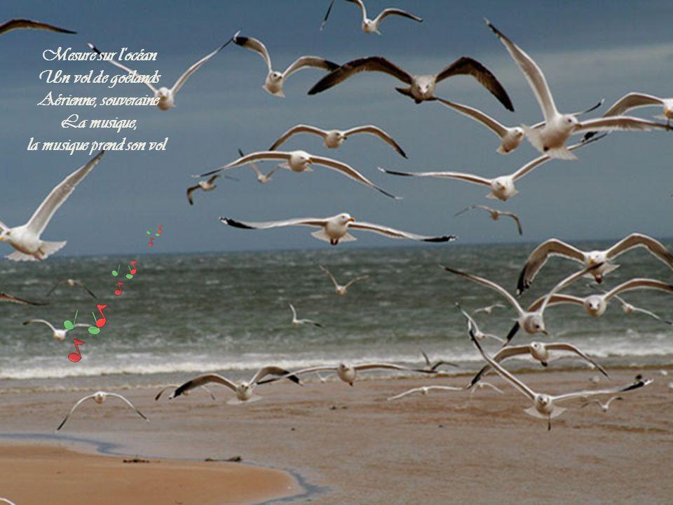 Mesure sur l océan Un vol de goélands Aérienne, souveraine La musique, la musique prend son vol