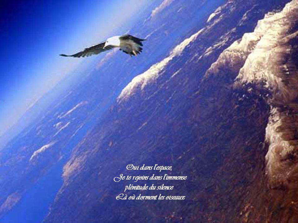 Oui dans l espace, Je te rejoins dans l immense plénitude du silence Là où dorment les oiseaux